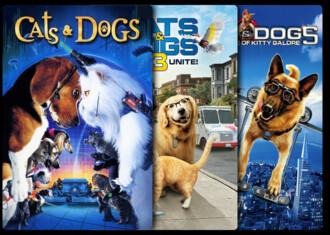 Como perros y gatos - Colección