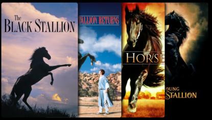 The Black Stallion Collection