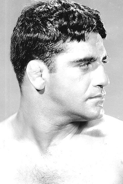 Sammy Stein