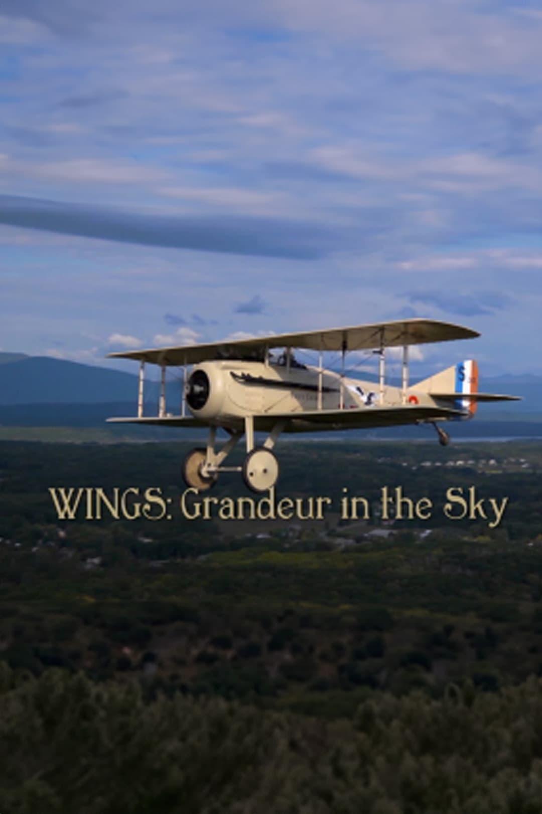 Wings: Grandeur in the Sky