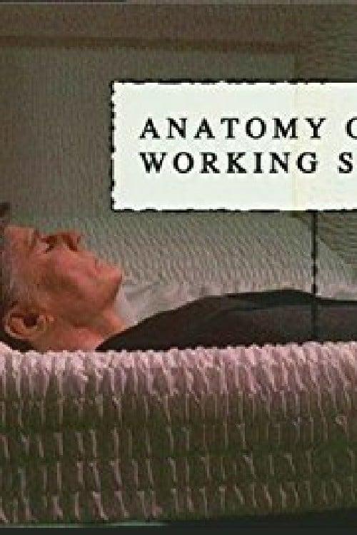 Anatomy of a Working Stiff