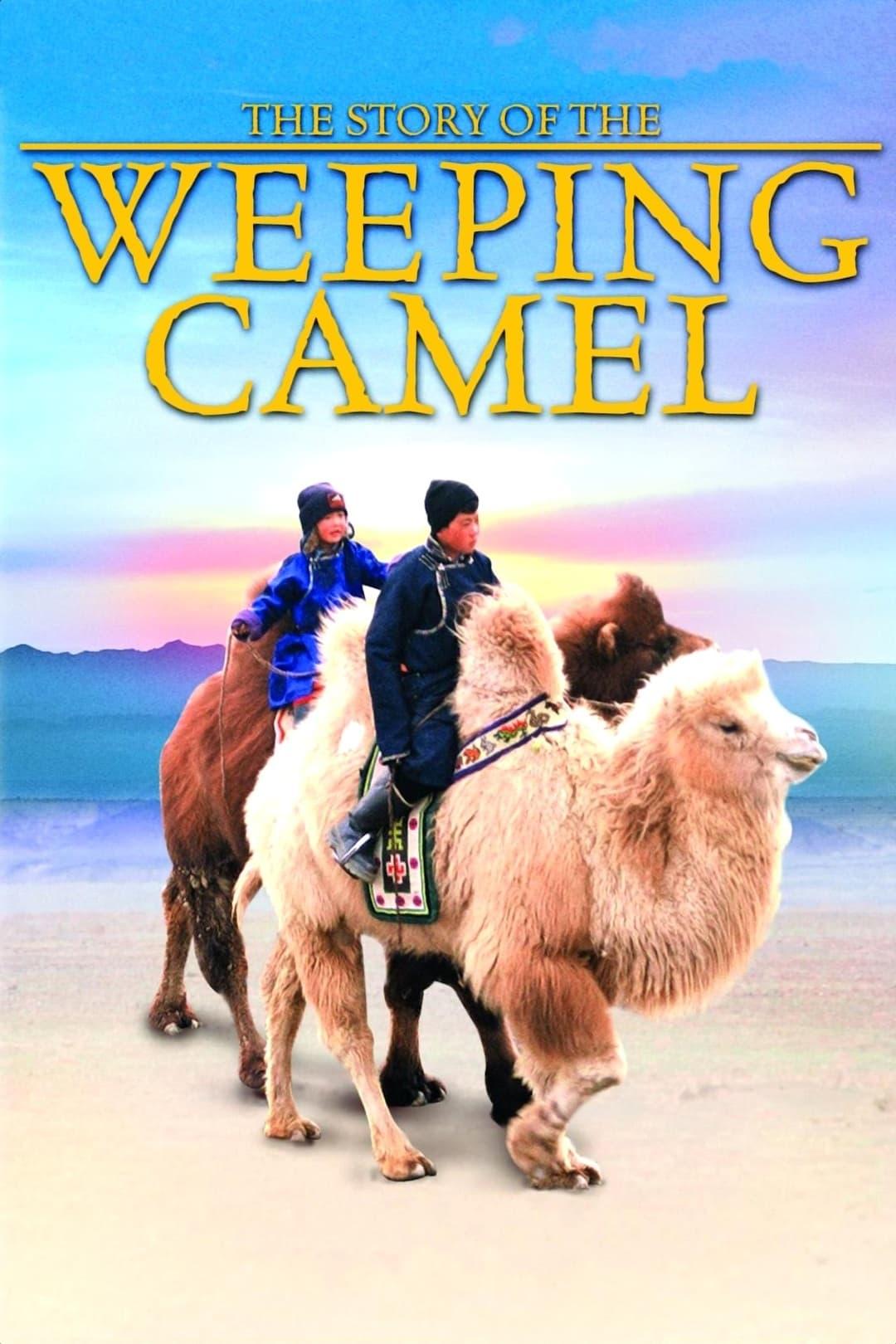 A História de um Camelo que Chora
