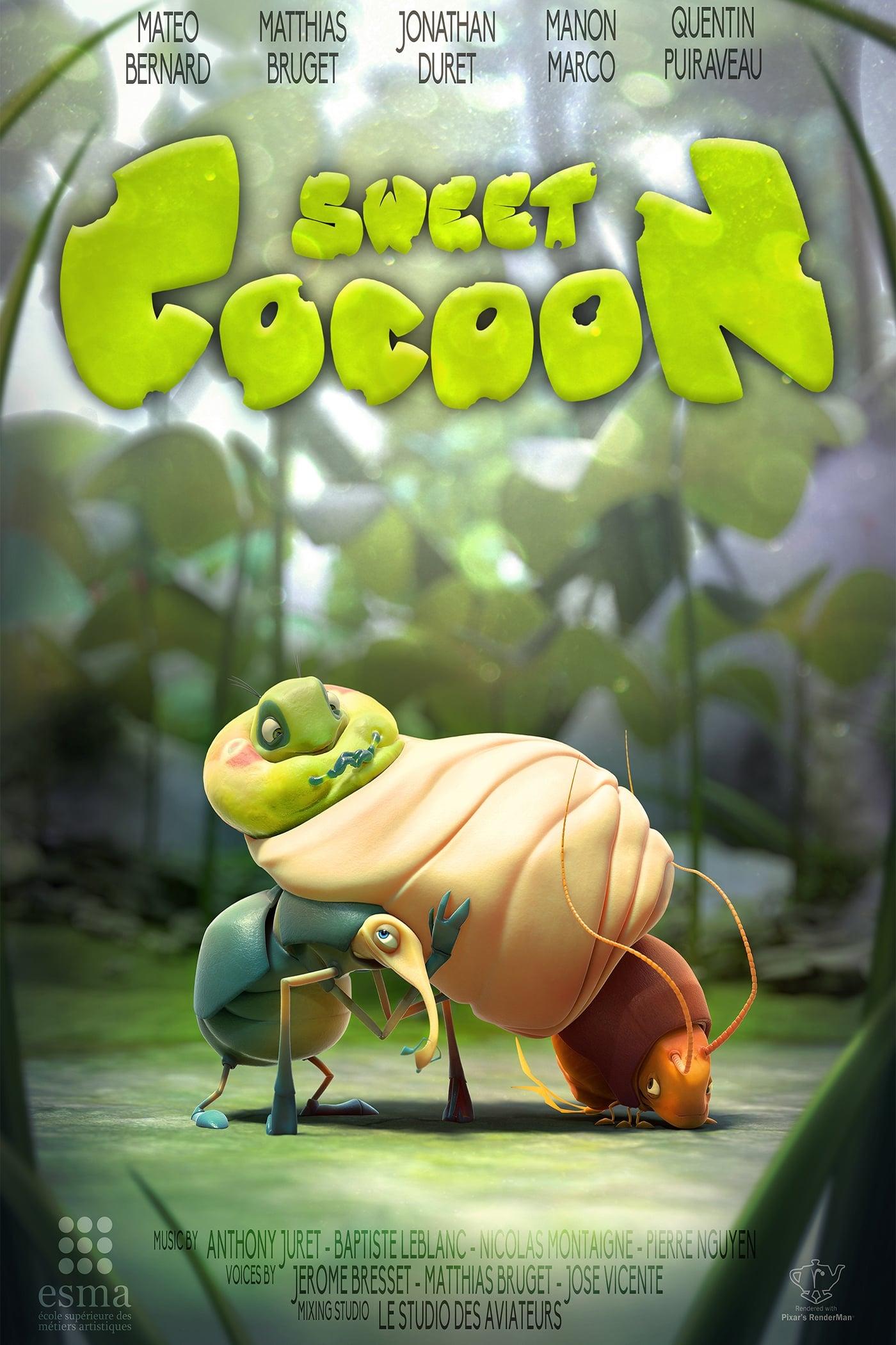 Sweet Cocoon