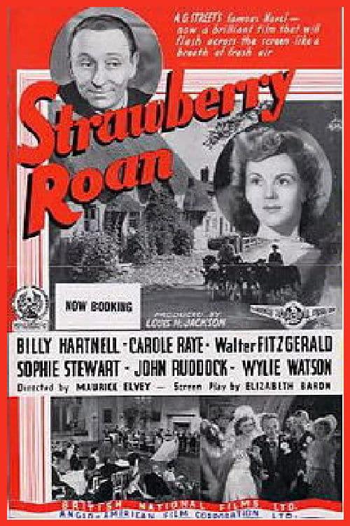 Strawberry Roan