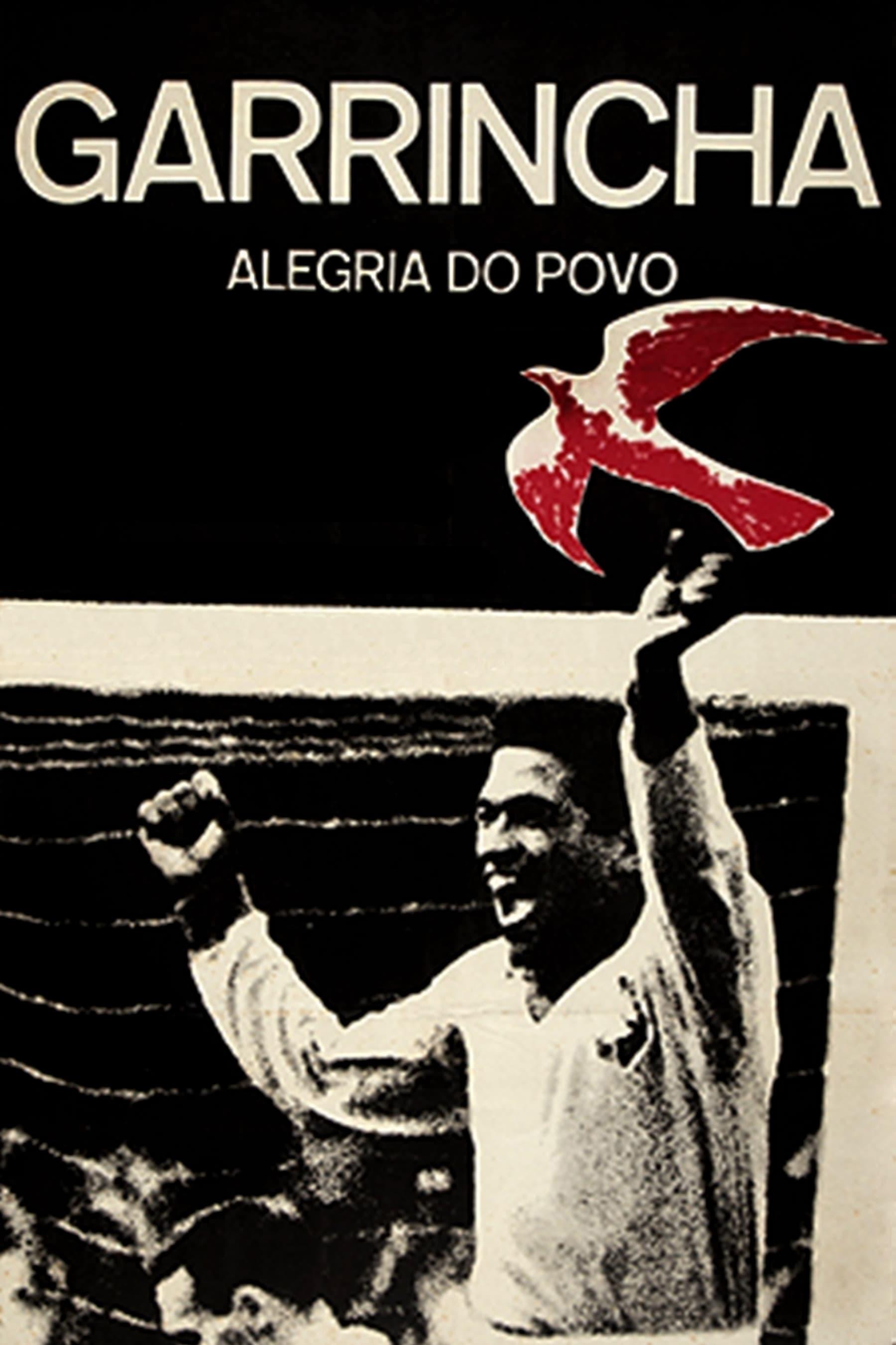 Garrincha: Joy of the People