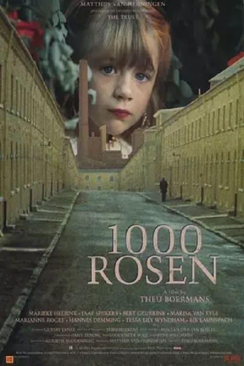 1,000 Roses