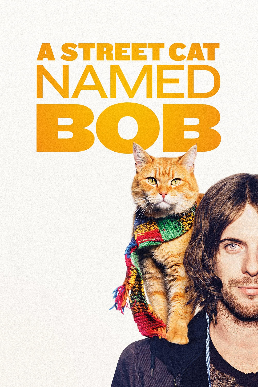 Um Gato de Rua Chamado Bob