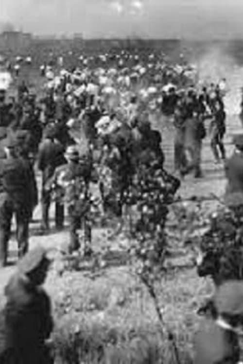 Republic Steel Strike Riots Newsreel Footage