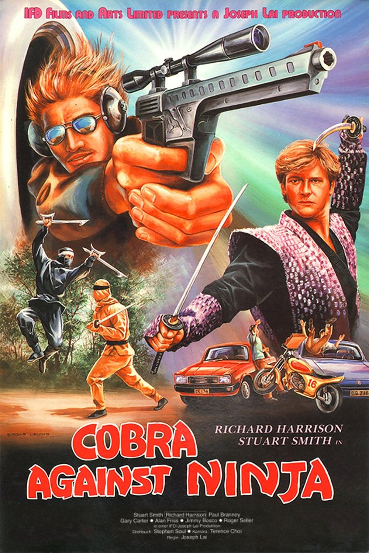 Cobra Against Ninja