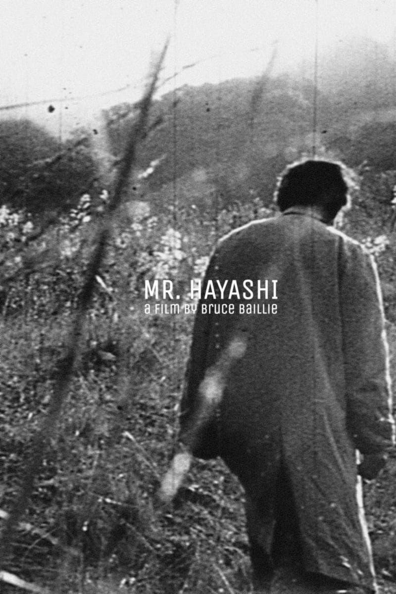 Mr. Hayashi