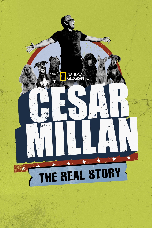 Cesar Millan: The Real Story