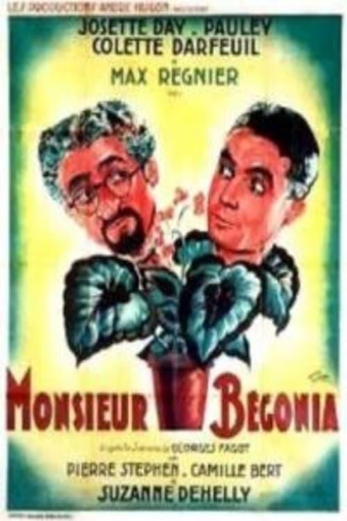 Monsieur Bégonia