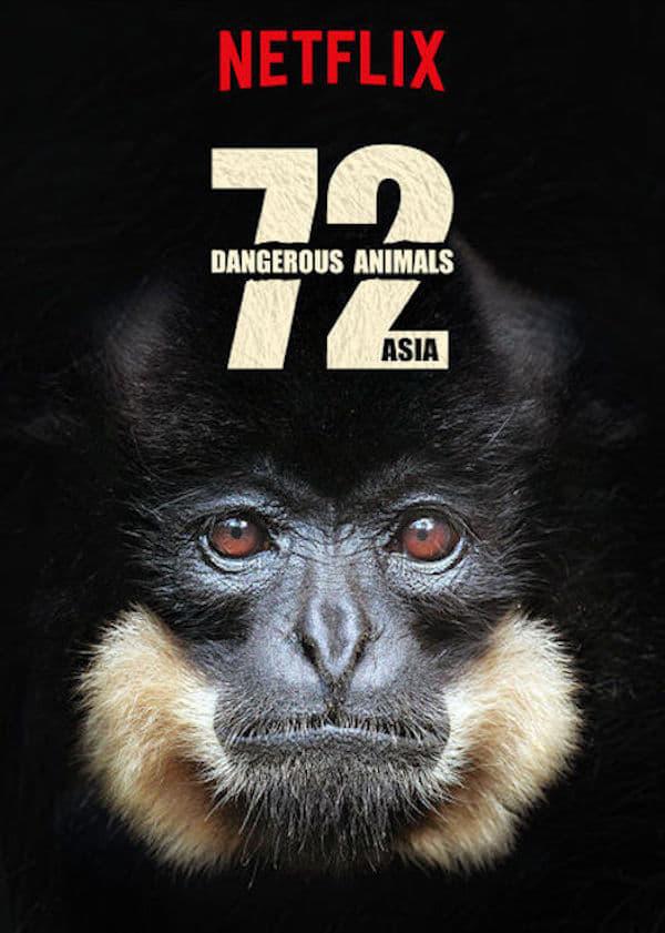 72 animales peligrosos Asia