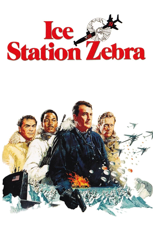 Estação Polar Zebra