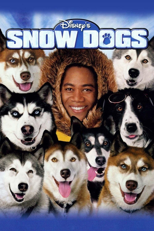 Neve pra Cachorro