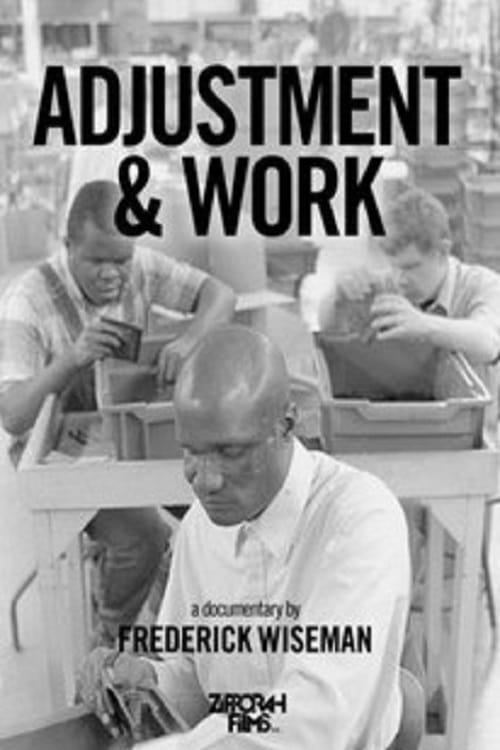 Adjustment & Work