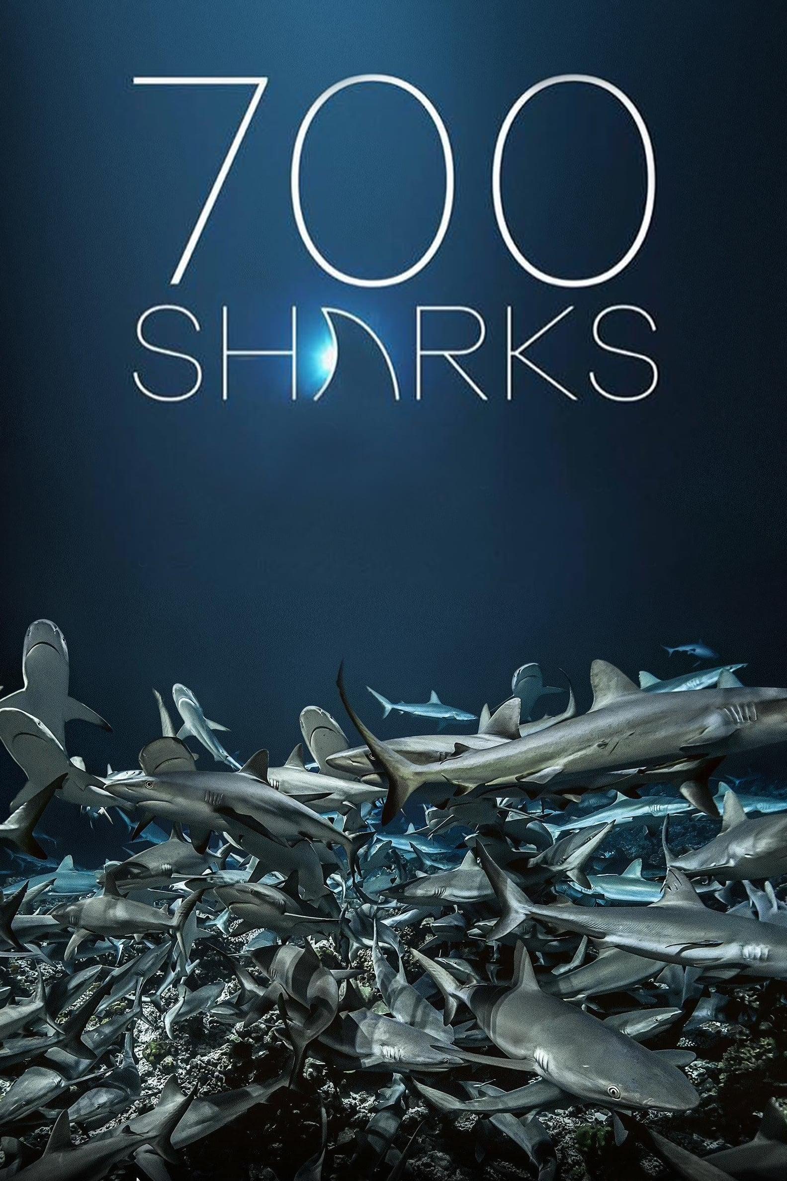 Escola de Tubarões