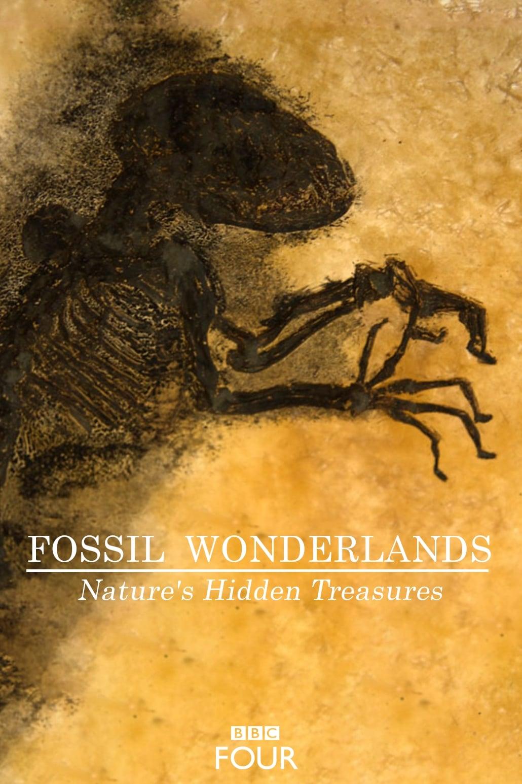 Fossil Wonderlands: Nature's Hidden Treasures