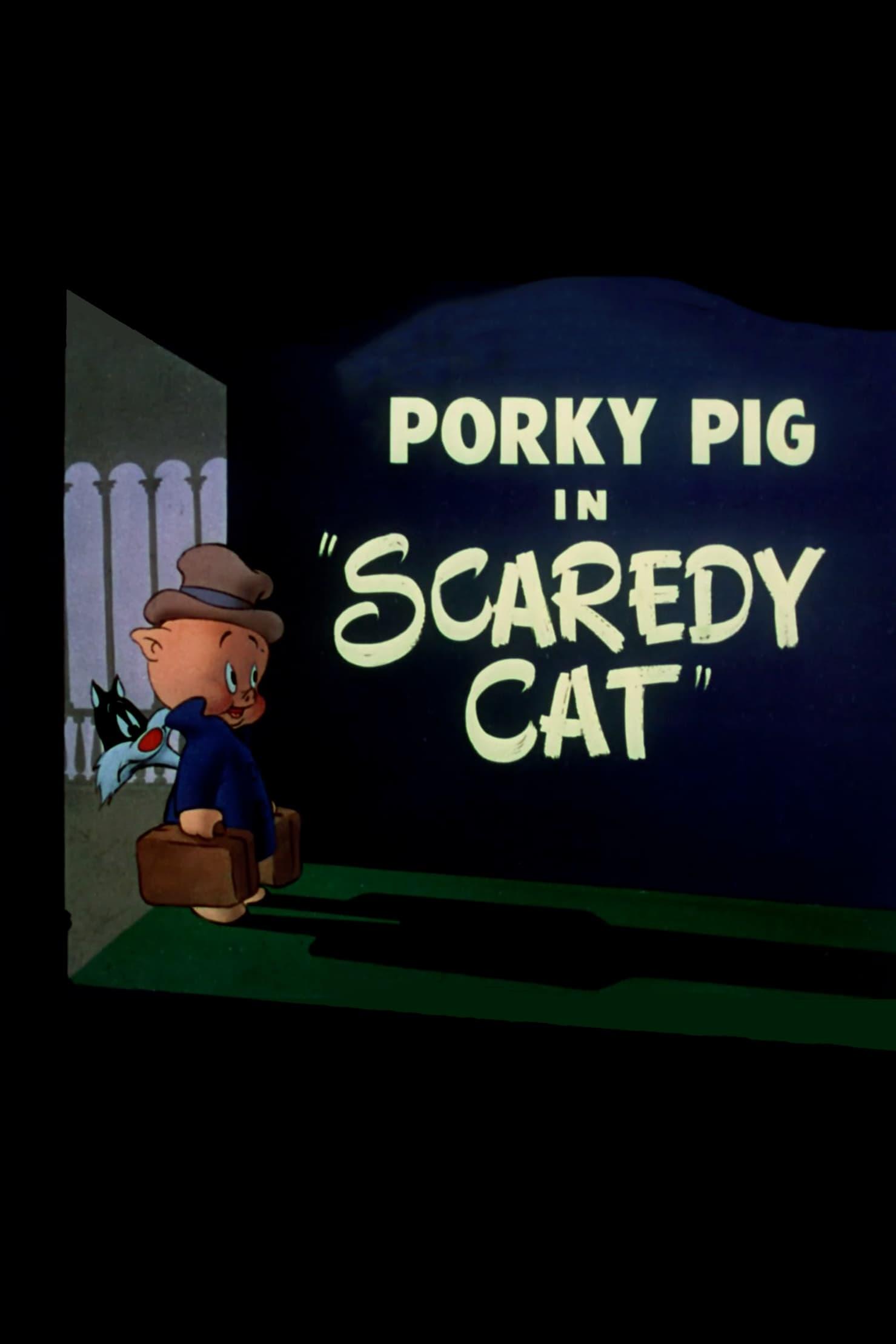 Porky: gato miedoso