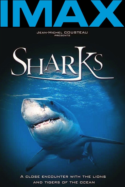 Tiburones 3D