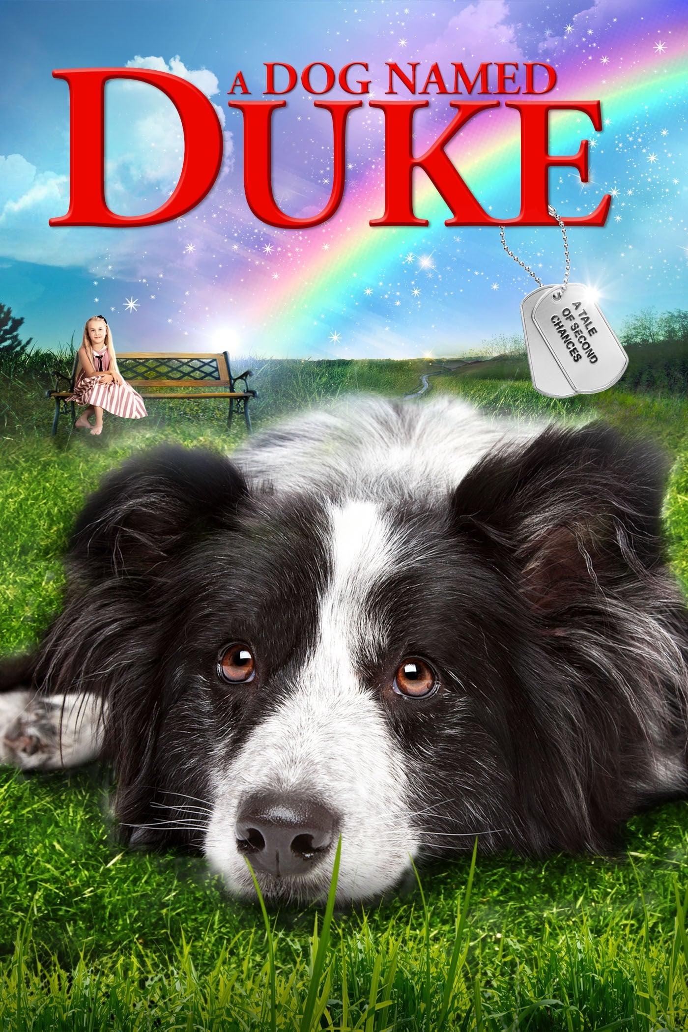 Ein Hund namens Duke