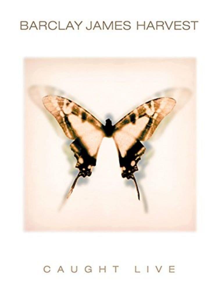 John Lee Hooker and Friends 1984-1992
