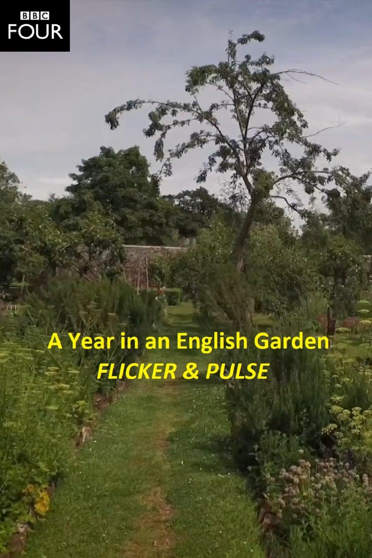 Flicker & Pulse