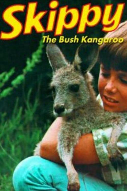 Skippy, le kangourou