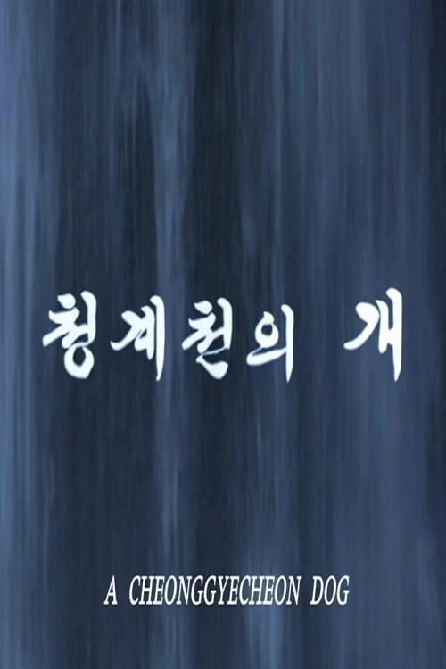 A Cheonggyecheon Dog