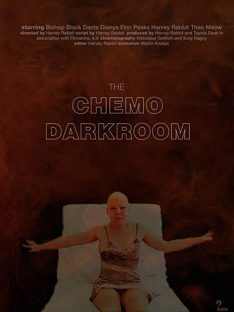 The Chemo Darkroom