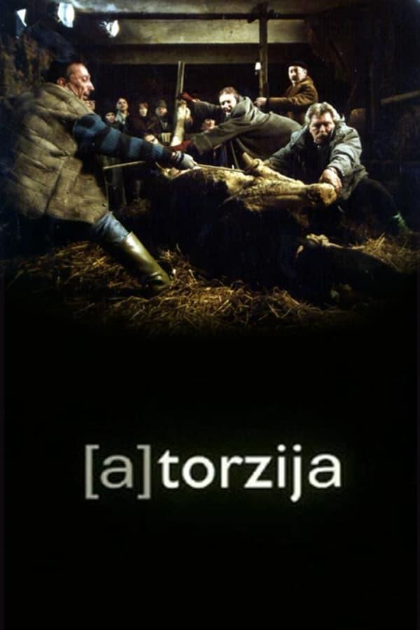(A)Torsion