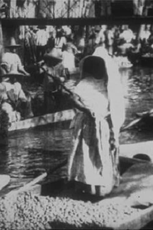 Marche Indien sur le canal de la Viga