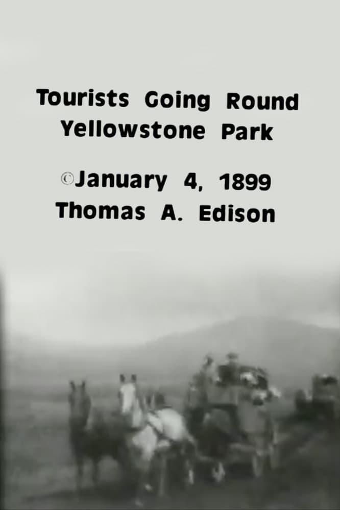 Tourists Going Round Yellowstone Park