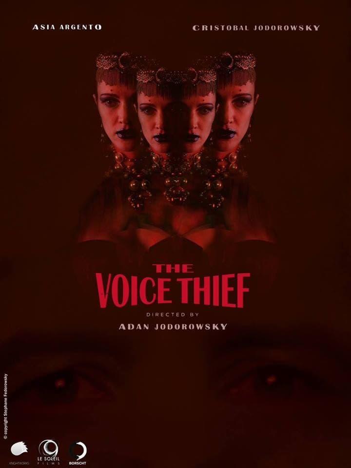 El ladrón de voces
