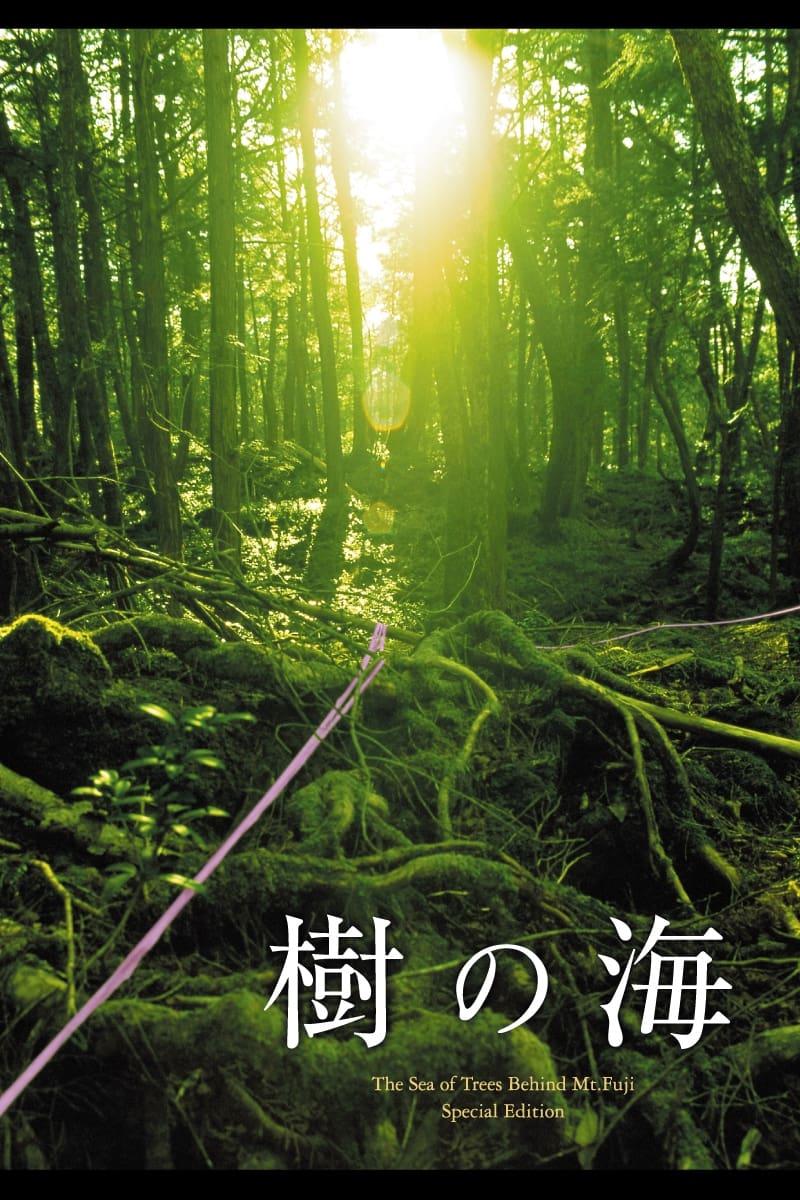 Jyukai: The Sea of Trees Behind Mt. Fuji