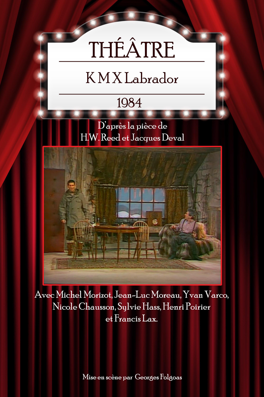 K M X Labrador