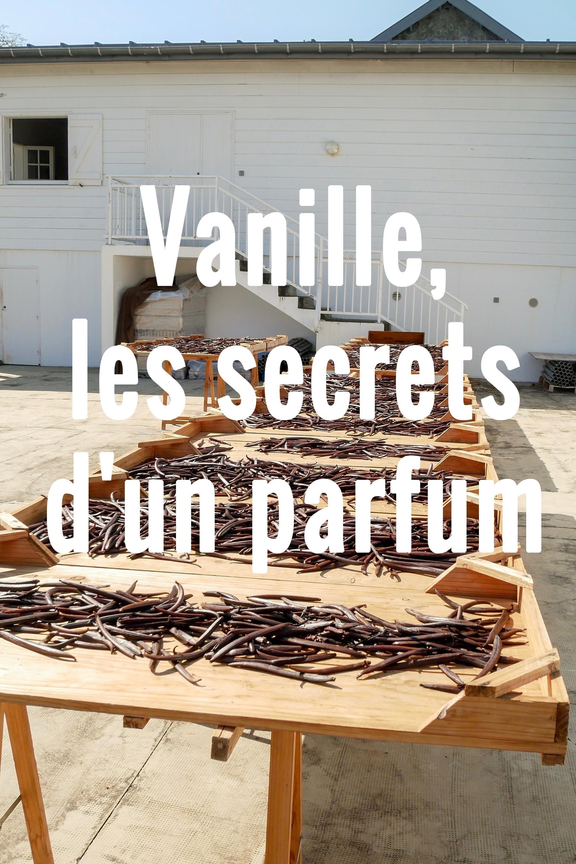 Vanille, les secrets d'un parfum