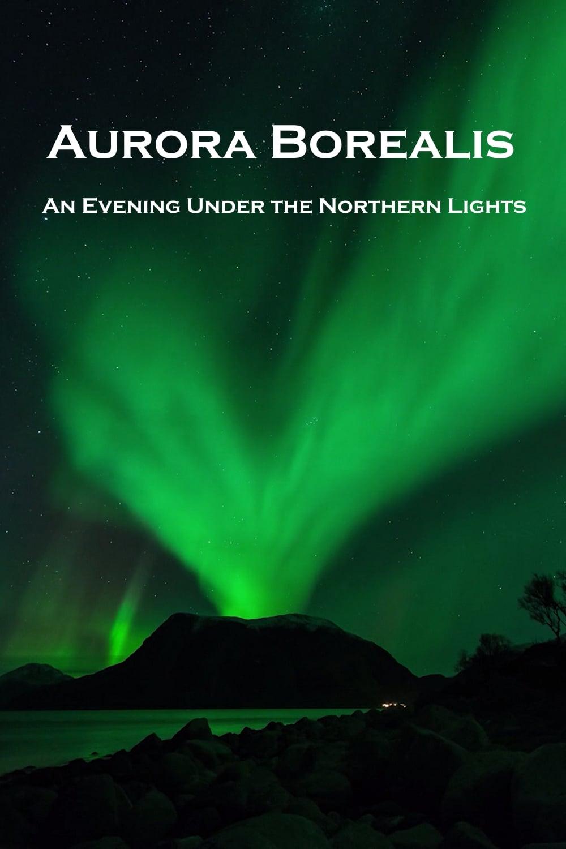 Aurora Borealis: An Evening under the Northern Lights