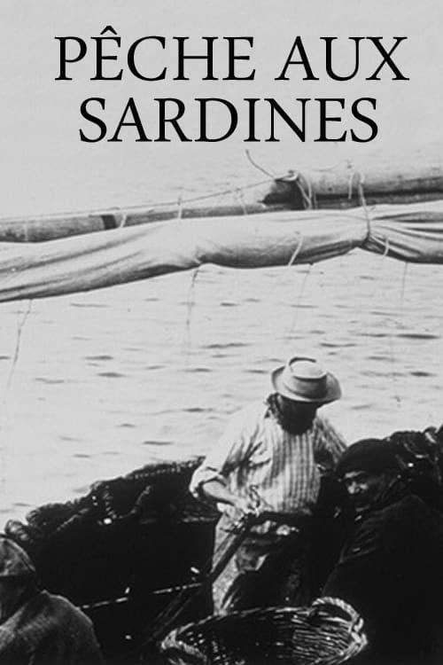 Pêche aux sardines