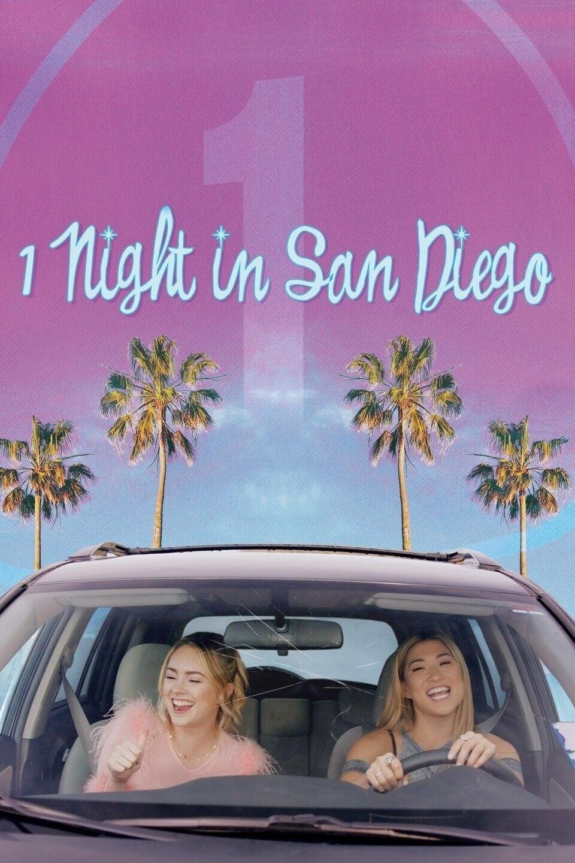 1 Night In San Diego