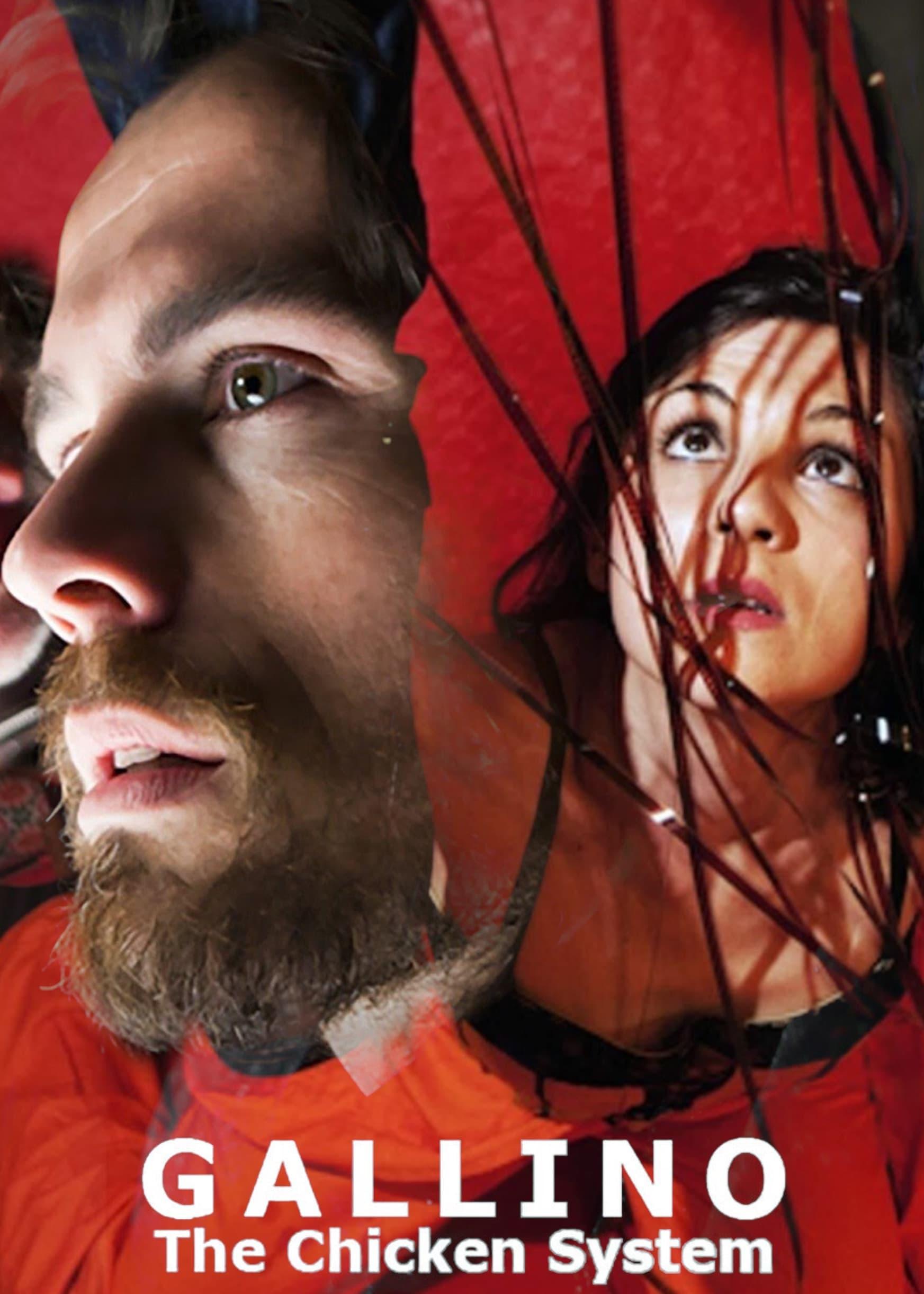 Gallino, the Chicken System