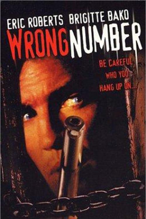 Número erróneo