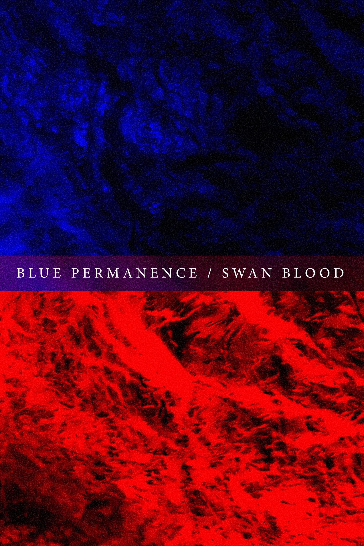Blue Permanence / Swan Blood
