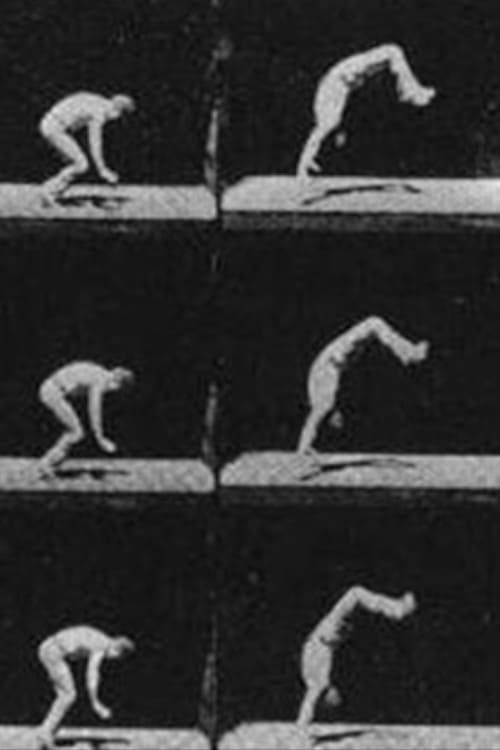 Unsuccessful Somersault