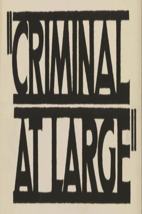 A Criminal at Large