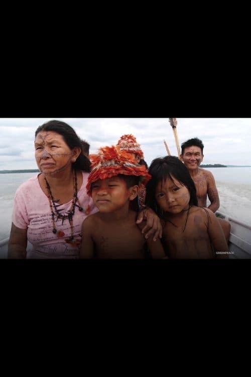 Protecting the Amazon Demands Radical Change