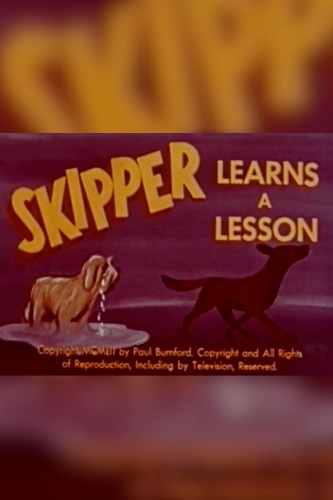 Skipper Learns A Lesson