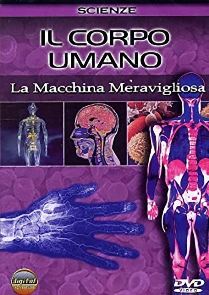 Il corpo umano - La macchina incredibile