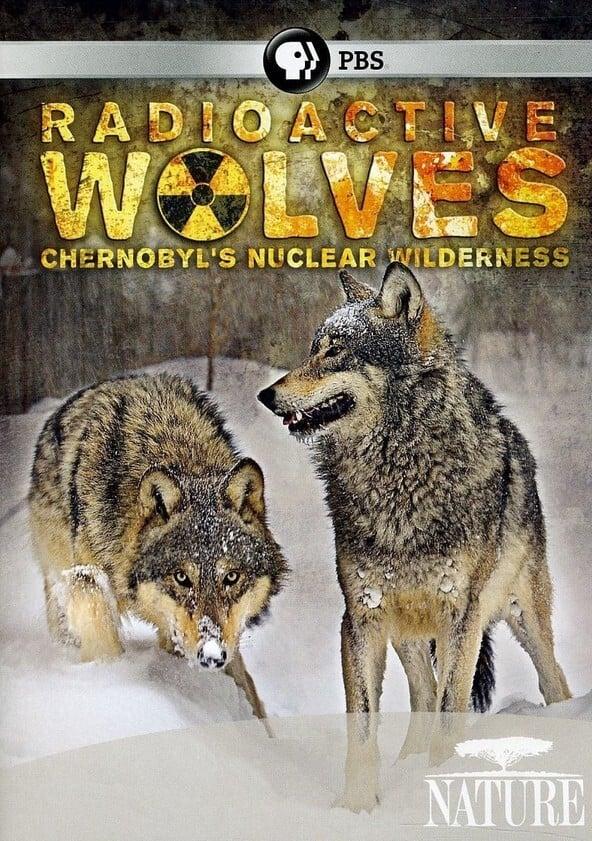 Universum: Radioaktive Wölfe