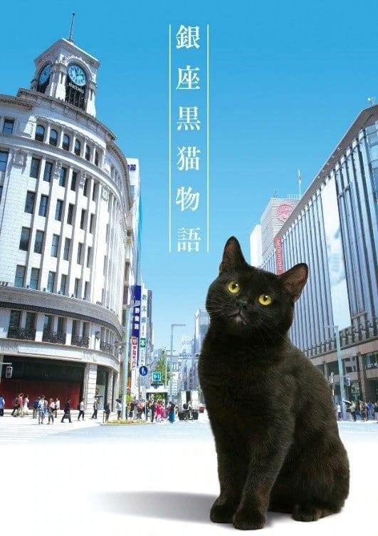 Ginza Black Cat Story